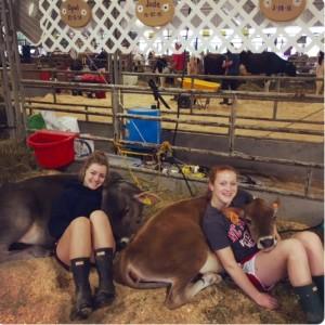 Lily Harris and Hannah Lemel at the fair, loving their cows.