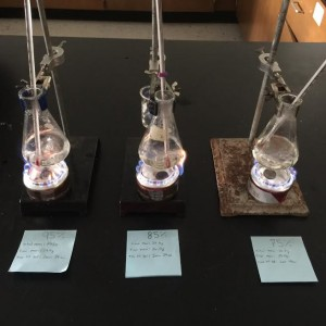 Students created their own heat source to boil water in their AP Environmental Studies class.